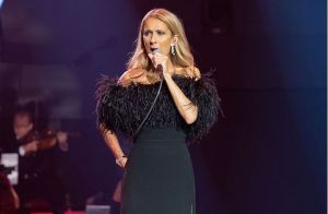 Céline Dion à Las Vegas : Son amusante anecdote lors d'un show millimétré