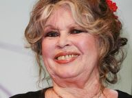 Brigitte Bardot fête ses 85 ans : elle dévoile le programme de son anniversaire