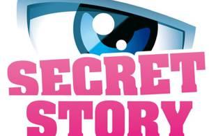 TF1 sérieusement mise en garde par le CSA... à propos de Secret Story !