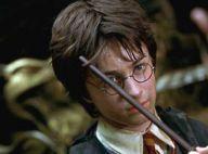 Harry Potter et la Chambre des Secrets : Les enfants du réalisateur dans le film