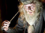 Harry Potter : Pourquoi Albus Dumbledore est-il incarné par différents acteurs ?