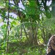 """Moussa dans l'épisode de """"Koh-Lanta 2020"""" du 15 mai, sur TF1"""