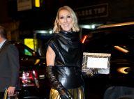 Céline Dion : Ce populaire chanteur français qui lui fait un appel du pied...