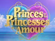 Les Princes de l'amour : Mariage surprise d'une star de l'émission