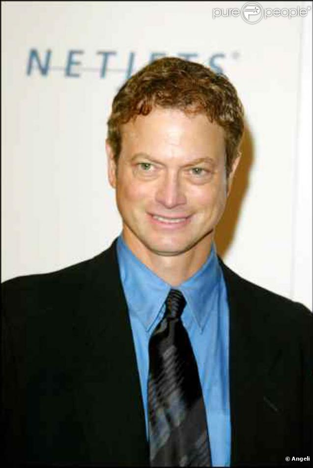 Gary Sinise - Picture
