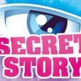 """Logo de """"Secret Story"""""""