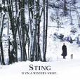 Sting, If on a winter's night...