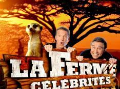 La Ferme Célébrités en Afrique : Faute d'audience, l'émission est... déprogrammée !