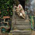 Harry Potter et les reliques de la mort : partie I avec Rhys Ifans