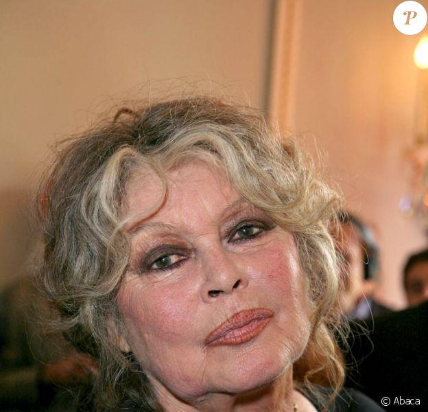 Brigitte Bardot a bien été approchée par l'Alliance Ecologiste Indépendante en vue de la présidentielle 2012.
