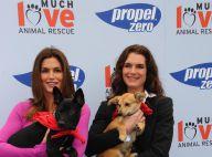 Cindy Crawford et Brooke Shields : Deux déesses réunies qui ont du chien !
