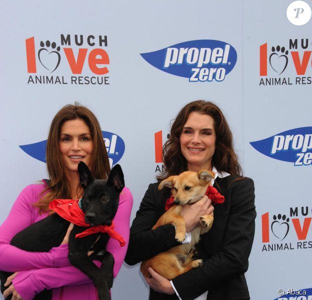 Brooke Shields prend la pose lors du Propel Zero à 1000 Celebrity Dog Walking à Los Angeles le 2 avril 2011