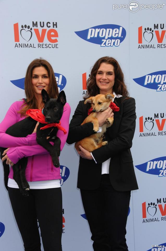 Brooke Shields prend la pose lors du Propel Zero à 1000 Celebrity Dog Walking à Los Angeles le 2 avril 2011