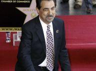 Joe Mantegna : La star d'Esprits Criminels honorée devant Andy Garcia !