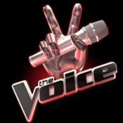 The Voice : TF1 recherche son jury de stars !