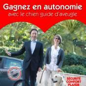 Stéphane Bern généreux parrain des chiens guides d'aveugles !