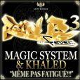 Même pas fatigué, des rois du zouglou de Magic System et Khaled, est le titre le plus juteux en droits d'auteur de l'année 2010.