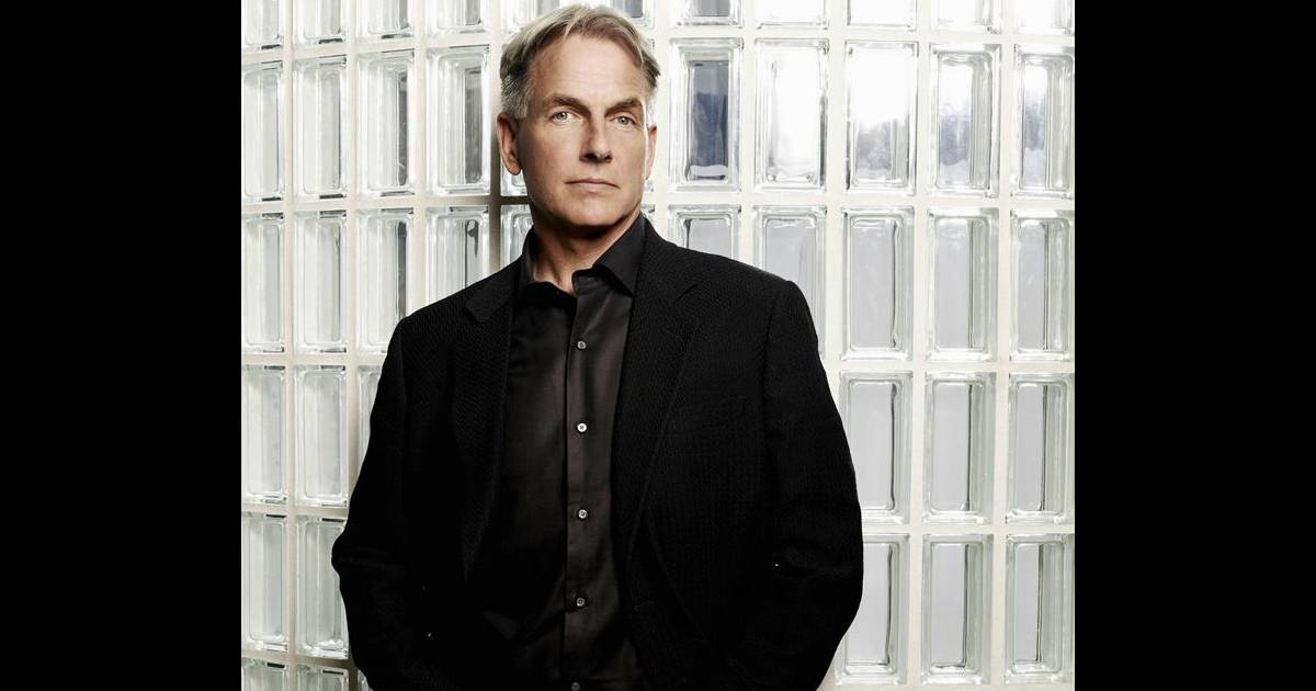 l 39 agent gibbs va peut tre retrouver l 39 amour dans ncis purepeople. Black Bedroom Furniture Sets. Home Design Ideas