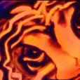 Les incroyables dessins dans le sable de Christian Pochet dans la bande-annonce de La France a un Incroyable Talent sur M6 le mercredi 16 novembre 2011