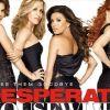 Desperate Housewives : La descente aux enfers de nos quatre héroïnes...