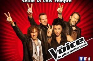 The Voice : Jenifer, très sexy, Louis Bertignac délirant, un jury de folie !