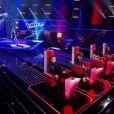 Prestation de Patrice dans The Voice, samedi 25 février 2012 sur TF1