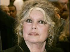 Brigitte Bardot : son étonnante voiture mise en vente... sur Internet !