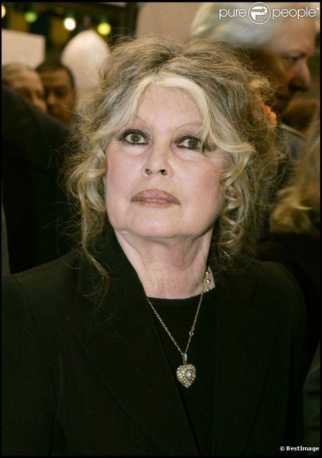 Brigitte bardot son tonnante voiture mise en vente sur internet - Maison brigitte bardot ...