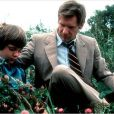 Harrison Ford dans le film Witness (1985)