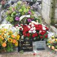 Inhumation de Daniel Darc au cimetière Montmartre à Paris le 14 mars 2013.