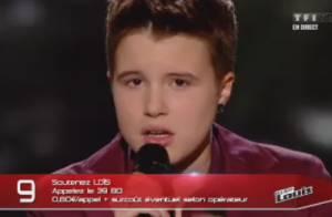 The Voice 2 : Huit talents soulagés en route pour The Voice Tour 2013