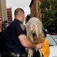 Amanda Bynes emmenée par la police après avoir jeté un bong par la fenêtre de son appartement et avoir consommé de la marijuana, à New York, le 24 mai 2013.