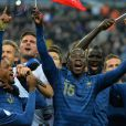 Les Bleus après la victoire de l'équipe de France sur l'Ukraine (3-0) qui lui offre la qualification au mondial 2014 au Brésil, le 19 novembre 2013 au Stade de France à Saint-Denis