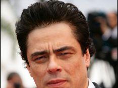 Benicio del Toro a trouvé sa reine de coeur !