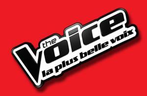 The Voice 3 : Jenifer, Mika, Garou et Florent Pagny de retour le 11 janvier !