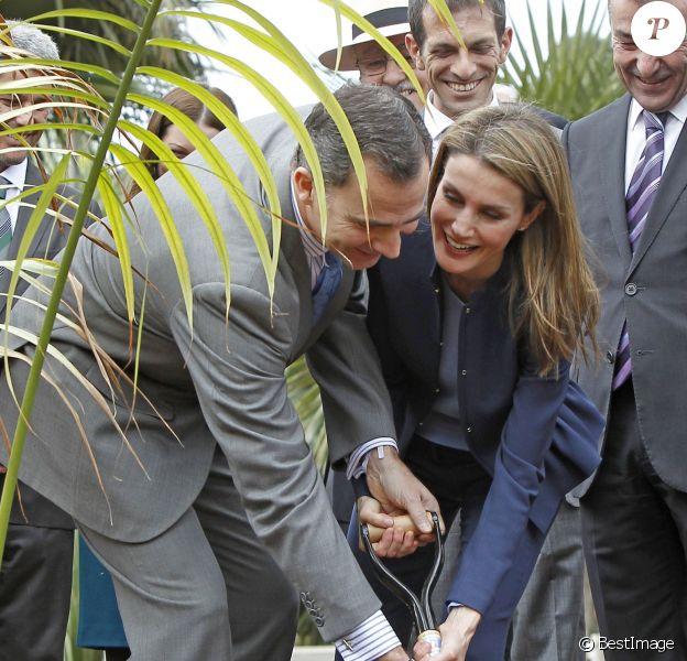 Le prince Felipe et la princesse Letizia d'Espagne ont planté un palmier le 28 janvier 2014 pour l'inauguration de la palmeraie de Ténérife, dans les îles Canaries.