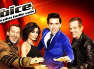 The Voice 3 : Découvrez les équipes des coachs, désormais au complet !