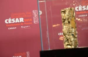 César 2014 : 5 choses à savoir sur la 39e cérémonie