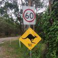 Christie, nouvel Ange des Anges de la télé-réalité 6 : ses photos en Australie