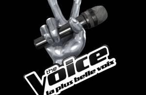 The Voice 3, la finale : Entre programmation éclectique et invités exceptionnels