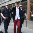 L'avant-première de Maléfique à Los Angeles le 28 mai 2014 et l'arrestation de Vitalii Sediuk qui a agressé Brad Pitt sur le tapis rouge.