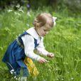 La princesse Estelle de Suède, 2 ans, en habit traditionnel dans une nouvelle photo officielle pour la Fête nationale 2014, le 6 juin.