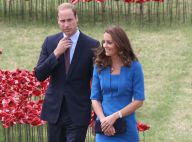 Kate Middleton, Maxima des Pays-Bas... : Royales face aux stars d'Hollywood