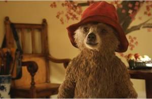 ''Paddington'' : Ce qu'il faut savoir sur cet ours adorable !