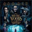 Affiche du film Into the Woods