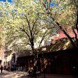 Pauline Ducruet a partagé cette photo de Cornelia Street, à New York, le 30 avril 2015 sur son compte Instagram