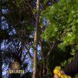 Alban est sacrifié dans Koh-Lanta 2015 sur TF1, le vendredi 5 juin 2015