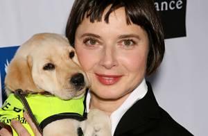 Isabella Rossellini met sa passion des chiens au service des aveugles