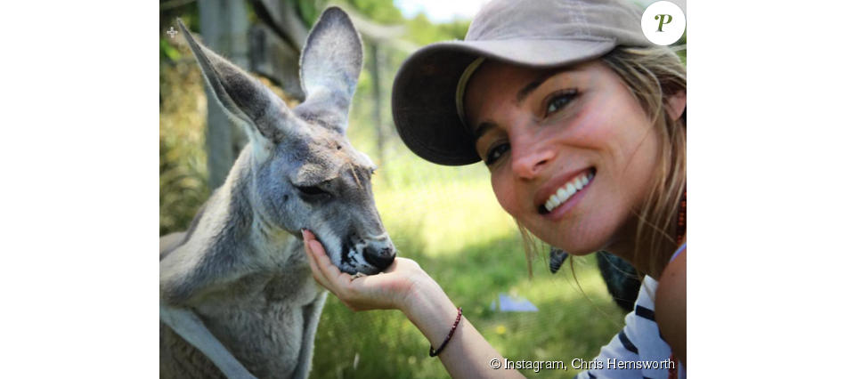 Chris Hemsworth se représente en kangourou avec sa chérie Elsa Pataky. (photo postée le 24 octobre 2015)