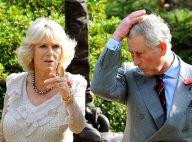REPORTAGE PHOTOS : Le prince Charles et Camilla au Japon, day 2 : la vie au grand air, il n'y a que ça de vrai !